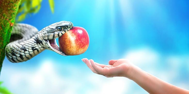 אם רק היה מזהה את חוויית הפיתוי כהזדמנות אדירה לדבוק בבורא עולם