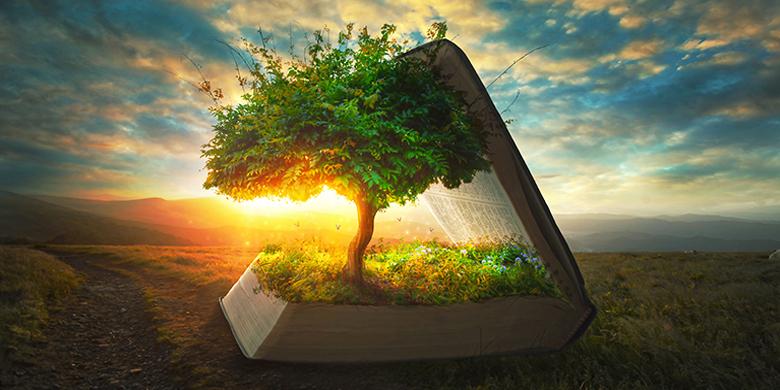 עץ הדעת טוב ורע
