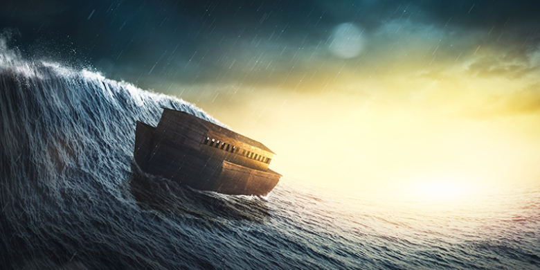 התיבה של נוח נתנה לי להתבונן על החיים מזווית ראיה עמוקה ומעניינת יותר